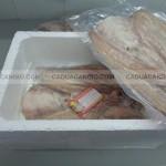 Cách đóng gói khô cá Dứa đi nước ngoài