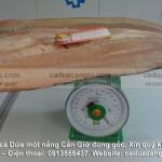 Cá Dứa trọng lượng trên 1kg tại Hiếu Cá Dứa